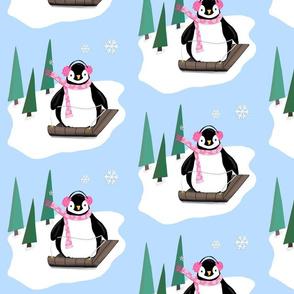 Penguins Sledding