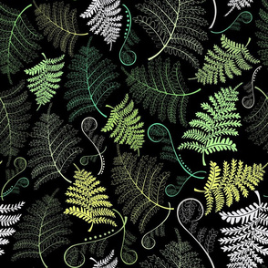 Fern leaves dark