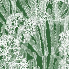 Sea Weeds White on Leaf Green 150
