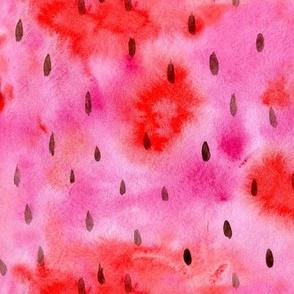 Watermelon pulp • watercolor