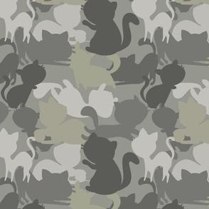 Camo Cats