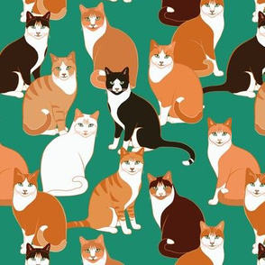Ginger Cats on teal