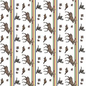 Canada animals vertical