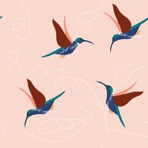 hummingbirdcoord-01