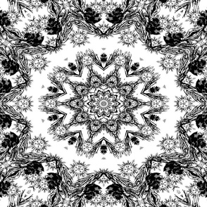 Kaleidoscope with White Background