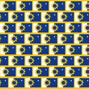 Topeka Flag Rows