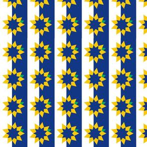 Topeka Flag Stars and Stripes