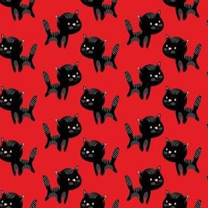 Playful black kitty