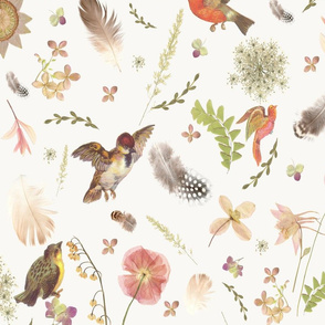Birds,Flowers and Feathers