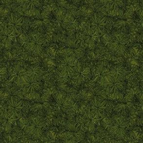 Rosemary on dark moss