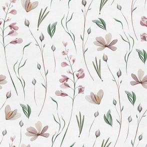 Botanical / Watercolour