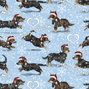 A Lancashire Heeler Christmas