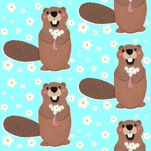 Beaver and Daisies
