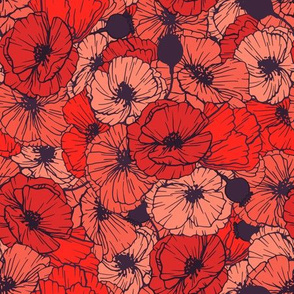Red Hand-drawn Poppies