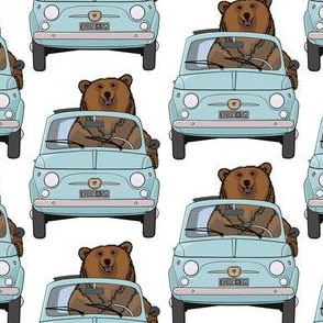 A brown bear and a blue car