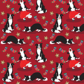 Normal scale • Christmas Border Collie red