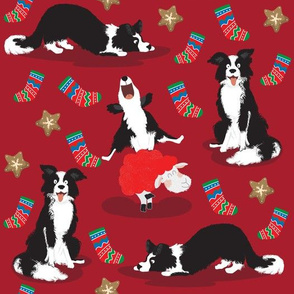Christmas Border Collie red - XL
