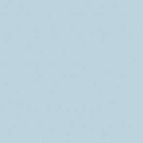 Spring Plain canvas light blue