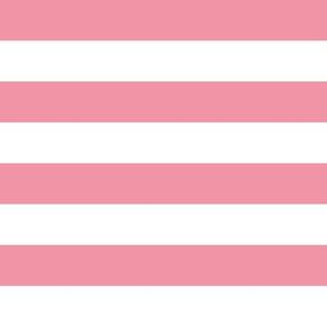 Pink-White-Rosella Garden