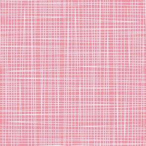 Pink White Lines - Rosella Garden