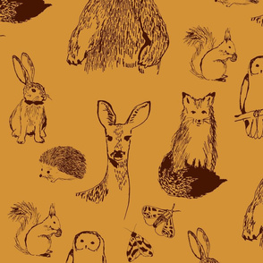 Woodland Animals on Amber