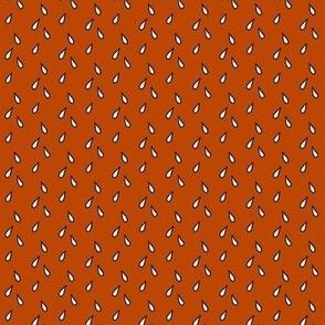 Seeds in burnt orange