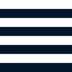 White Teal Stripes