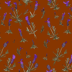 Lavender on burnt orange