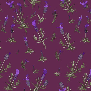 Lavender on dark magenta
