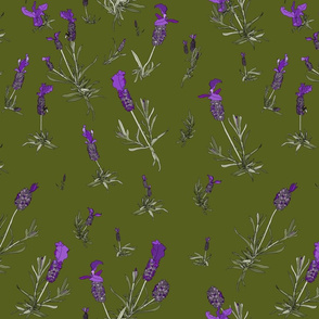 Lavender on dark moss
