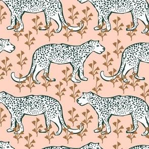 cheetahs in pink