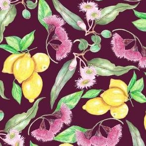 Lemons and eucalyptus