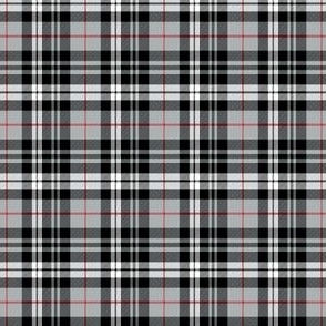 (extra small scale) fall plaid || red stripe C19BS