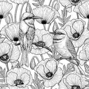Bee eaters and poppies, black and white
