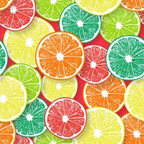Citrus fruit slices 2