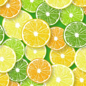 Citrus fruit slices 3