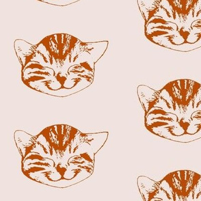 kitty medium first light terracotta