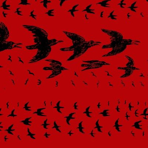 caw caw red black