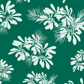 White Lace Euphorbia- Snowflake Winter Wonder- Large Scale
