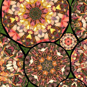 6 leaf kaleidoscopes - large full size