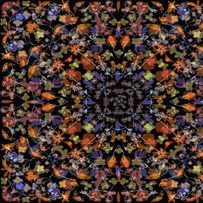 Kaleidoscope Orange and Blue