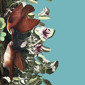 The Audubon Collection ~ Key West Doves on Eluned ~Border Print