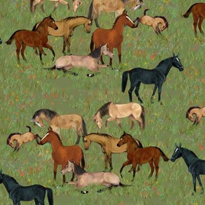 I love Bay Horses