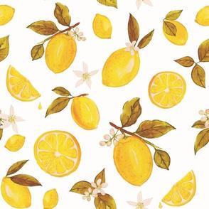 Rustic  Lemons in Watercolor  by Heather Anderson