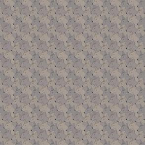 Small Hairless Xoloitzcuintli portrait pack