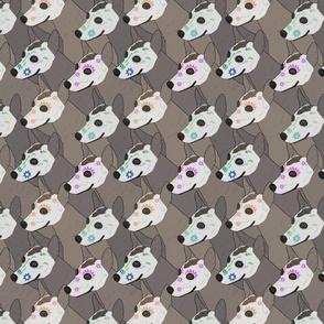 Sugar skull painted Xoloitzcuintli portrait pack