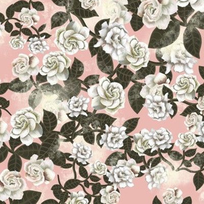 Gardenia chintz - Rose