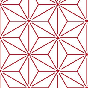christmas variation No. 6 ☆  geometric stars