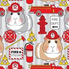 fireman guinea pigs on grey stripe