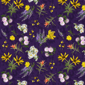 Colorado Wildflowers Purple Chintz